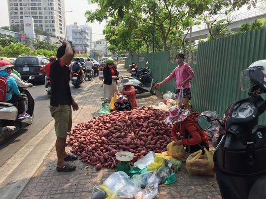 Khoai lang Nhật 10.000 đồng/kg tràn khắp các tuyến phố TP HCM - Ảnh 2.