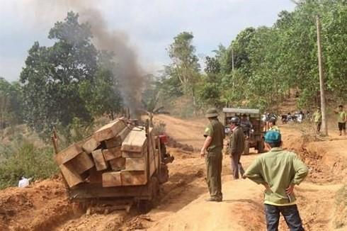 Lương thấp như cán bộ bảo vệ rừng: Đi 30 km/ngày, lương 3 triệu/tháng - Ảnh 1.