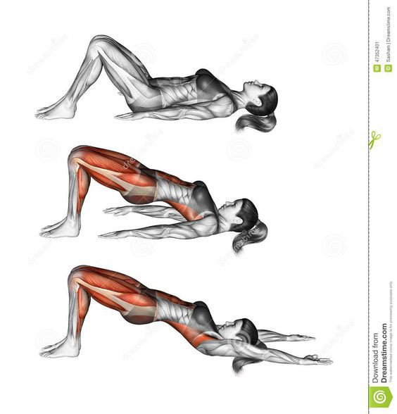 9 bài tập thể dục tốt nhất cho người sau 40 tuổi: Người không tập thì sớm lão hóa bệnh tật - Ảnh 5.