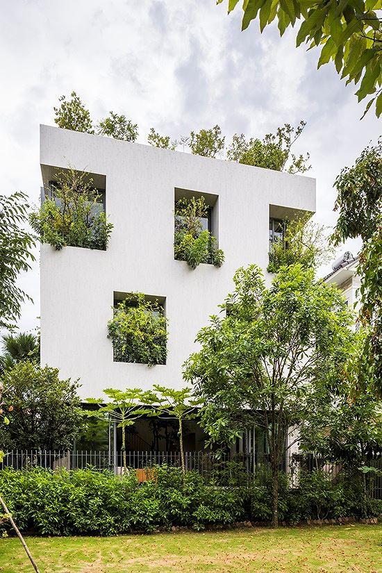 Hô biến cả rừng cây xanh vào trong nhà phố - Ảnh 1.