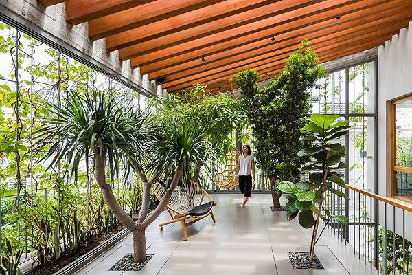 Hô biến cả rừng cây xanh vào trong nhà phố - Ảnh 11.