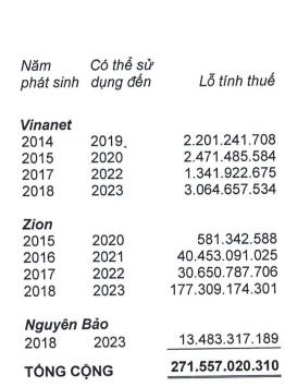 Định giá tăng vọt lên 2 tỷ USD nhưng lợi nhuận 2018 của VNG giảm tới 63%, gánh lỗ 430 tỷ từ Tiki và Zalo Pay - Ảnh 2.