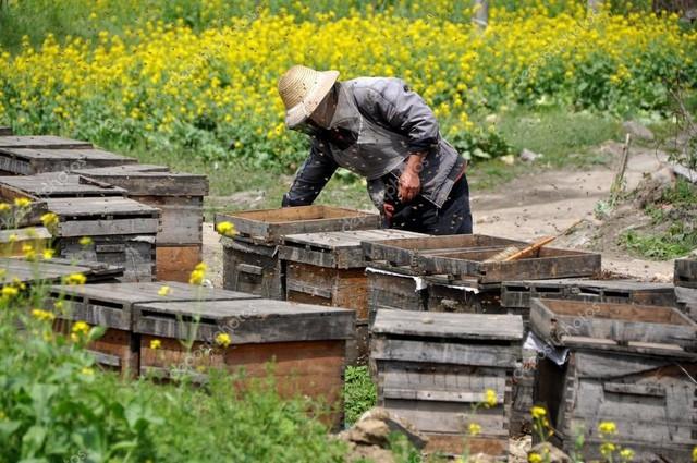 Trung Quốc đang nuôi hơn 1,4 tỷ dân của mình như thế nào? (Phần 1) - Ảnh 16.