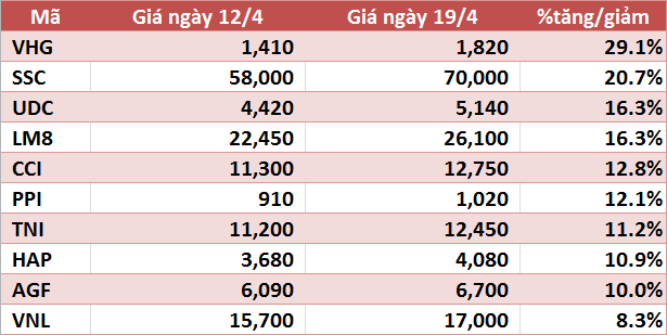 10 cổ phiếu tăng/giảm mạnh nhất tuần: VHG tiếp tục gây ấn tượng - Ảnh 1.