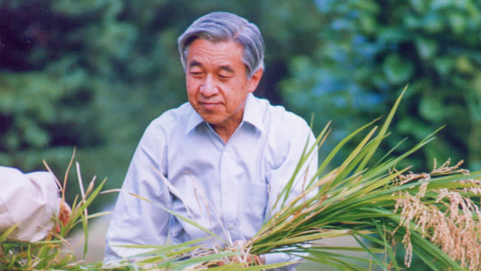 Những khoảnh khắc đáng nhớ của Nhật hoàng Akihito và hoàng hậu Michiko trước thời điểm chuyển giao lịch sử - Ảnh 6.