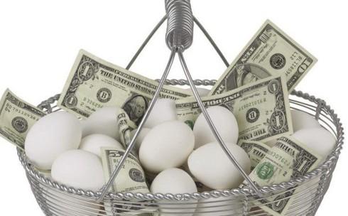 """Khởi nghiệp: Có nên bỏ hết """"trứng"""" vào 1 """"giỏ""""?"""