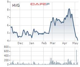 Thuỷ sản Hùng Vương tiếp tục phải bán tài sản, cổ phiếu mất 50% giá trị trong 1 tháng - Ảnh 2.
