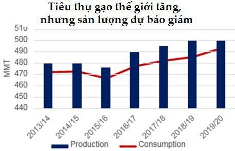 Image result for thị trường lúa gạo cuối năm 2019