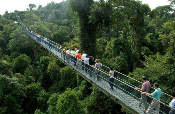 Tận hưởng chuyến du lịch Singapore theo phong cách 'Crazy Rich Asians' nhưng với giá rẻ, đây là sự lựa chọn dành cho bạn - Ảnh 4.