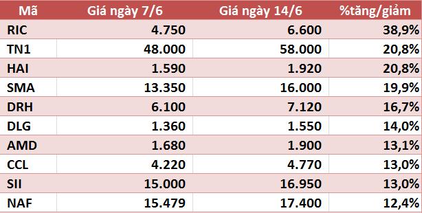 10 cổ phiếu tăng/giảm mạnh nhất tuần: Nhóm vừa và nhỏ vẫn hút dòng tiền - Ảnh 1.
