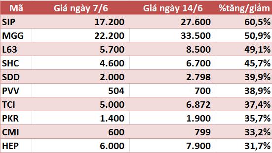 10 cổ phiếu tăng/giảm mạnh nhất tuần: Nhóm vừa và nhỏ vẫn hút dòng tiền - Ảnh 5.