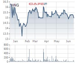 Giá cao su liên tục phá đỉnh, HAGL Agrico bán Cao su Đông Dương cho THADI - Ảnh 2.