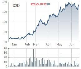 Tăng gấp đôi từ đầu năm, D2D sắp phát hành cổ phiếu thưởng tỷ lệ 100% - Ảnh 1.