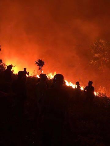 Cháy rừng lớn nhất ở Hà Tĩnh, chặn quốc lộ 1A, nghìn người dập lửa - Ảnh 12.