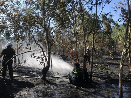 Cháy lớn trên bán đảo Sơn Trà, hơn 8 hecta rừng bị thiêu rụi  - Ảnh 1.