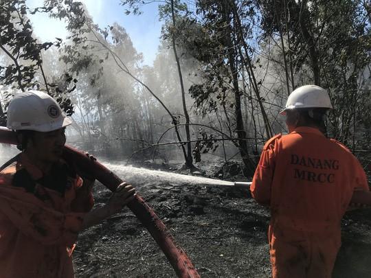 Cháy lớn trên bán đảo Sơn Trà, hơn 8 hecta rừng bị thiêu rụi  - Ảnh 2.