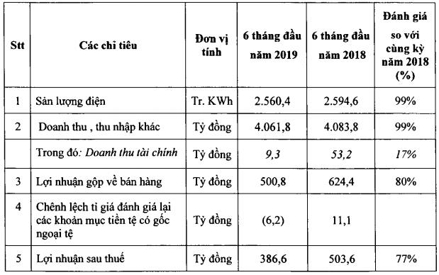 NT2 đạt lãi ròng 387 tỷ sau 6 tháng, thực hiện hơn 52% chỉ tiêu năm 2019 - Ảnh 1.