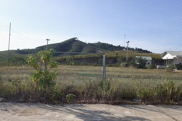 Trại bò nghìn tỷ liên quan ông Trần Bắc Hà giờ thành vườn chuối - Ảnh 6.