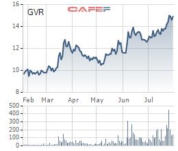 Tập đoàn Cao su (GVR): 6 tháng lãi sau thuế 1.059 tỷ đồng, tăng 15,7% cùng kỳ năm trước - Ảnh 3.
