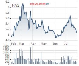 Hoàng Anh Gia Lai (HAG) báo lỗ ròng 539 tỷ trong quý 2, đang mượn tạm bầu Đức hơn 2.500 tỷ đồng - Ảnh 3.