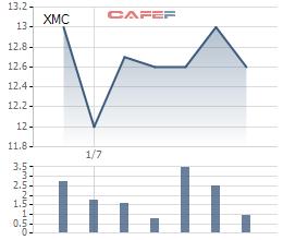Xuân Mai Corp (XMC) sắp có sự xáo trộn lớn về cơ cấu cổ đông ngay khi trở lại chứng trường - Ảnh 1.