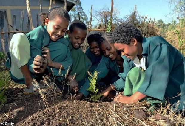 Trồng 350 TRIỆU cây xanh trong MỘT ngày, quốc gia này chính thức phá kỷ lục trồng cây trên mọi thời đại - Ảnh 2.