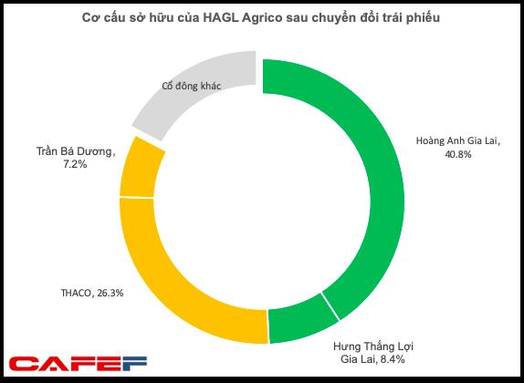 Hoàn tất chuyển đổi trái phiếu cho THACO, tỷ lệ sở hữu của nhóm HAGL tại HAGL Agrico xuống dưới mức chi phối 50% - Ảnh 1.