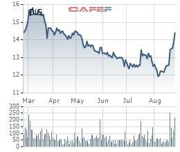 Giá cổ phiếu hồi phục, vợ Chủ tịch DIC Corp đăng ký mua 1 triệu cổ phiếu DIG - Ảnh 1.