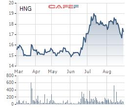 Bị kiểm toán ngoại trừ ý kiến có thể lỗ thêm 192 tỷ đồng, HAGL Agrico nói gì? - Ảnh 1.