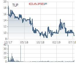 Cổ phiếu về đáy, Thanh Lễ (TLP) bất ngờ báo lỗ quý 2 - Ảnh 2.