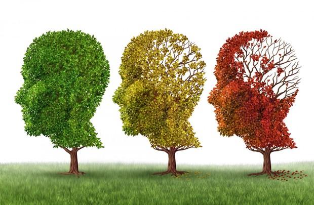 8 biện pháp được nghiên cứu bởi khoa học có thể ngăn ngừa bệnh Alzheimer và giúp bạn vượt qua chứng mất trí nhớ - Ảnh 1.