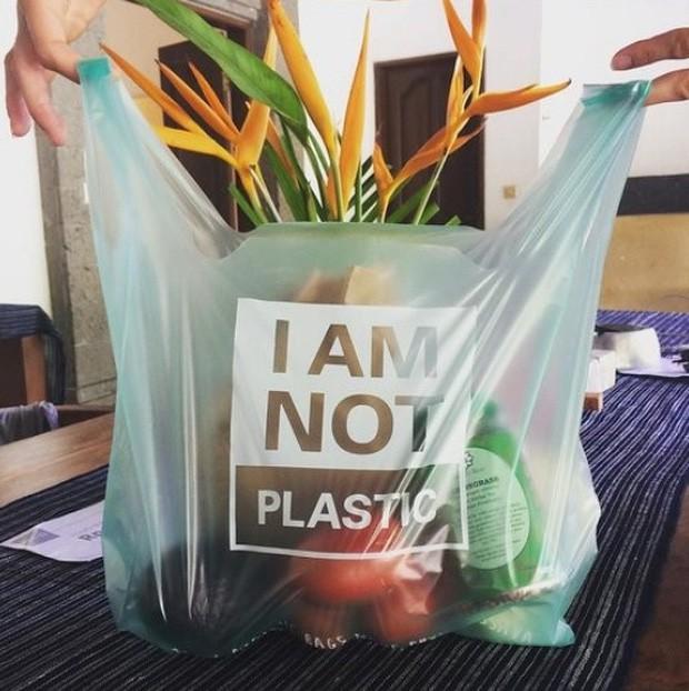 Chiếc túi này chính là thứ sẽ thay đổi toàn bộ cuộc chiến chống nhựa trên toàn thế giới: Chẳng khác gì túi nylon nhưng lại... bổ dưỡng cho sinh vật biển - Ảnh 1.
