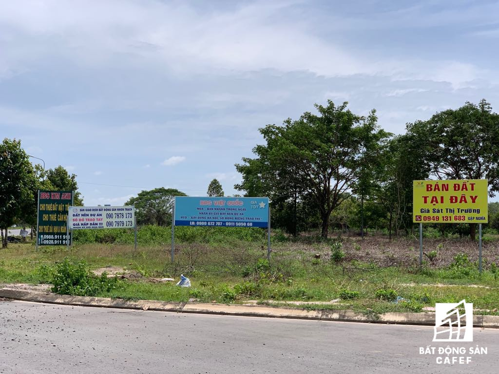 Đồng Nai chốt phương án xây cầu Cát Lái nối Nhơn Trạch và TP.HCM, bức tranh thị trường bất động sản thay đổi chóng mặt - Ảnh 26.