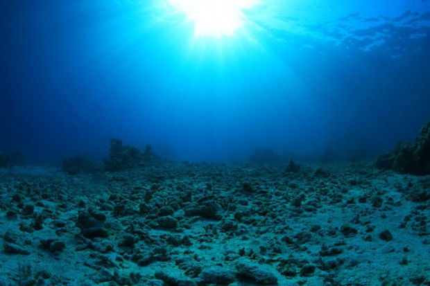 Nếu khí quyển vượt ngưỡng CO2 chấp nhận được, nhiều khả năng đại họa diệt vong sẽ xảy ra - Ảnh 3.