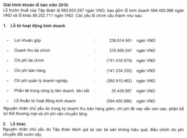 """HAGL phản hồi việc có thể lỗ thêm 491 tỷ đồng: """"Nghị định 20 có nhiều điểm bất hợp lý, chưa đúng bản chất chống chuyển giá"""" - Ảnh 1."""