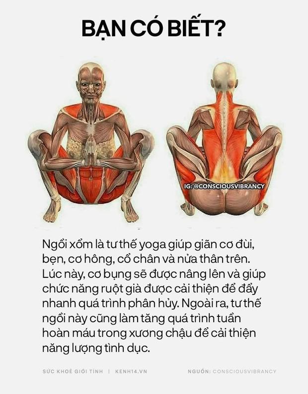 Bạn có biết: 10 tư thế yoga đơn giản sau đây đều có tác dụng rất tốt cho sức khoẻ và tinh thần - Ảnh 7.
