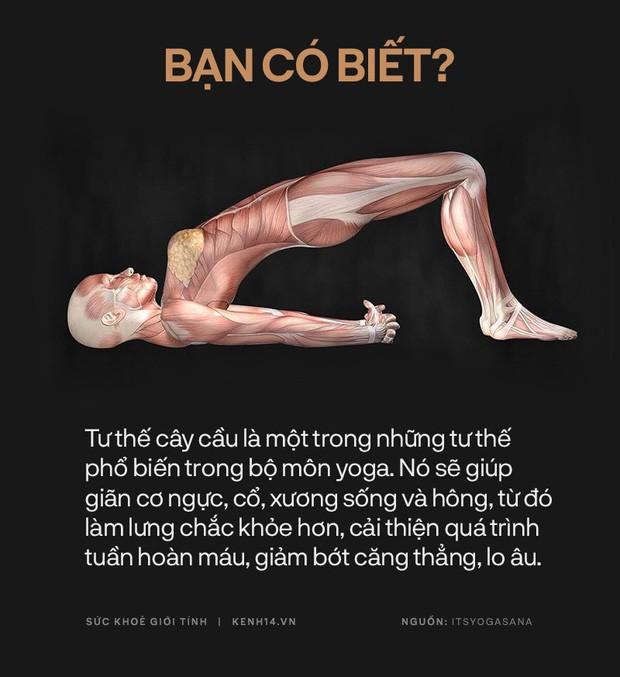 Bạn có biết: 10 tư thế yoga đơn giản sau đây đều có tác dụng rất tốt cho sức khoẻ và tinh thần - Ảnh 9.