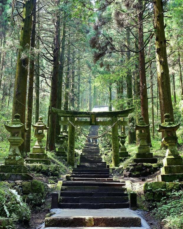 Loạt cổng Torii huyền thoại dọc khắp xứ Phù Tang, có nơi nối dài đến hơn... 10.000 cái - Ảnh 17.