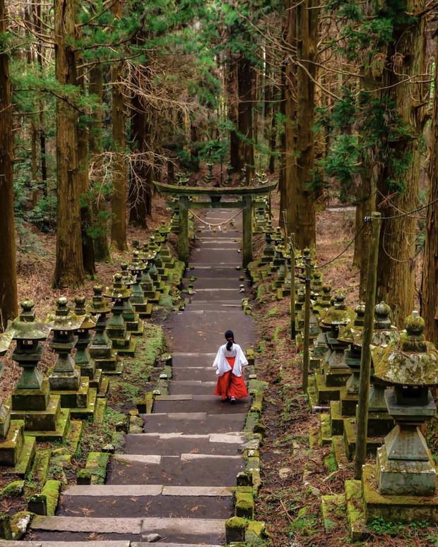 Loạt cổng Torii huyền thoại dọc khắp xứ Phù Tang, có nơi nối dài đến hơn... 10.000 cái - Ảnh 18.