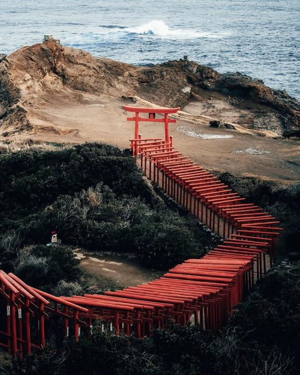 Loạt cổng Torii huyền thoại dọc khắp xứ Phù Tang, có nơi nối dài đến hơn... 10.000 cái - Ảnh 19.