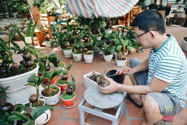 Dừa hình con chuột độc đáo ở Sài Gòn giá gần 1 triệu đồng, khách nườm nượp đặt hàng dịp Tết Canh Tý 2020 - Ảnh 2.