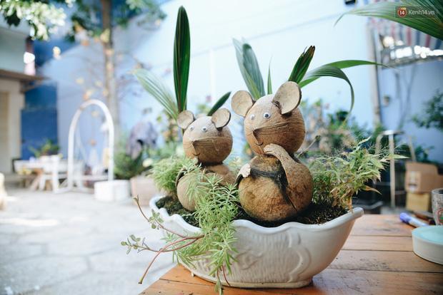 Dừa hình con chuột độc đáo ở Sài Gòn giá gần 1 triệu đồng, khách nườm nượp đặt hàng dịp Tết Canh Tý 2020 - Ảnh 6.
