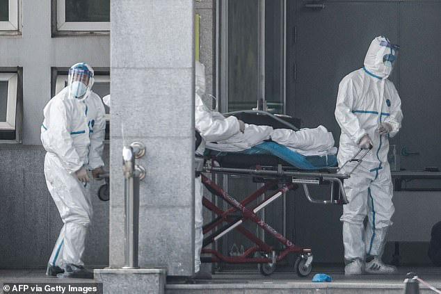 WHO: Virus corona mới chưa phải tình trạng khẩn cấp quốc tế, phong tỏa thành phố, cửa khẩu không ngăn được dịch bệnh lây lan - Ảnh 2.