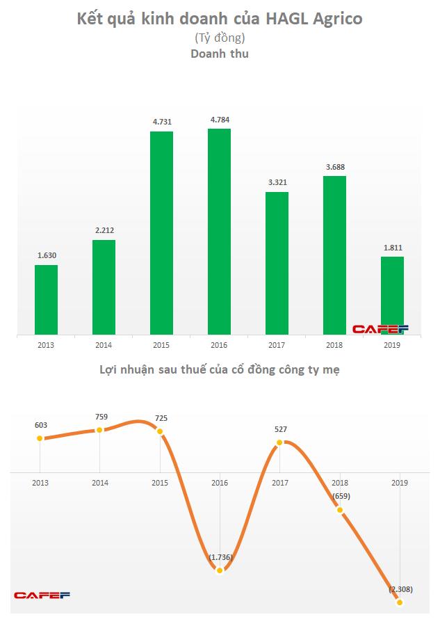 HAGL Agrico (HNG) báo lỗ ròng hơn 2.308 tỷ đồng do nguồn thu thấp và xử lý tài sản xấu - Ảnh 3.