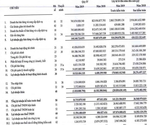 Đức Long Gia Lai (DLG) báo lãi 108 tỷ đồng năm 2019, gấp hơn 7 lần cùng kỳ - Ảnh 2.