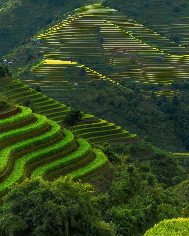 HOT: Ruộng bậc thang Mù Cang Chải vừa được công nhận Di tích Quốc gia đặc biệt, dự sẽ ngày càng hot trên bản đồ du lịch Việt - Ảnh 7.