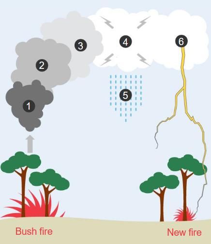 Cháy rừng ở Úc nóng đến nỗi tạo ra cả sấm và chớp giật đùng đùng - Ảnh 1.