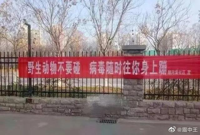 """Băng rôn phòng chống virus corona """"khó đỡ"""" ở Trung Quốc - Ảnh 13."""