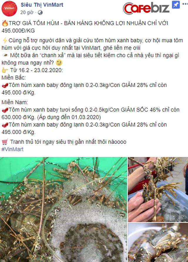 """VinMart """"giải cứu tôm hùm"""": Tuyên bố bán hàng không lợi nhuận, hỗ trợ nông dân ảnh hưởng bởi dịch Corona, giá chỉ 495 ngàn đồng/kg - Ảnh 1."""