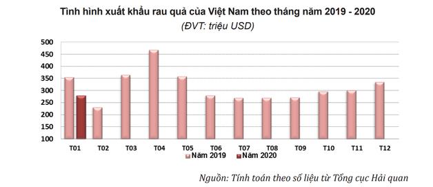 Xuất khẩu rau quả sang Trung Quốc giảm mạnh do virus Covid-19 - Ảnh 1.